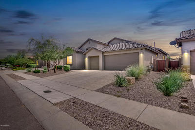 Pima County Single Family Home For Sale: 7139 W Dupont Way