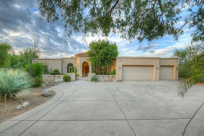 Pima County, Pinal County Single Family Home For Sale: 6159 N Whaleback Place