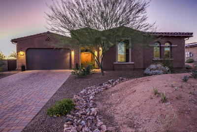 Tucson Single Family Home For Sale: 11777 N Palawan Place