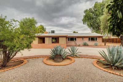 Tucson Single Family Home For Sale: 6421 E Shepherd Hills