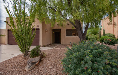 Tucson Single Family Home For Sale: 9211 N Jessy Lane