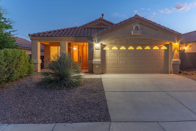 Tucson Single Family Home For Sale: 10570 Bonpland Willow Drive