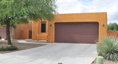Tucson Single Family Home For Sale: 3240 S Lakeside View Drive
