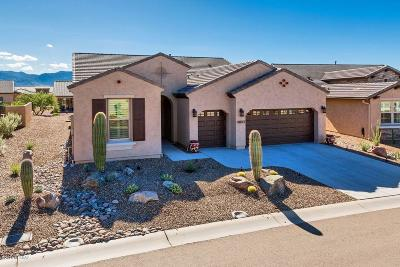 Oracle Single Family Home For Sale: 32847 S Hyrax Lane