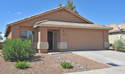 Tucson Single Family Home For Sale: 9525 N Scarlet Tanager Lane
