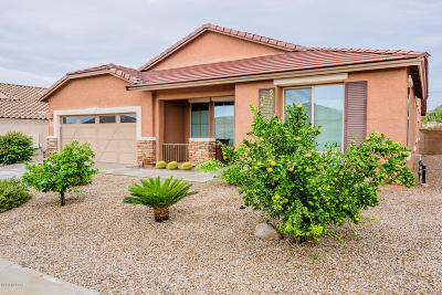 Pima County Single Family Home For Sale: 5194 W Spring Willow Court
