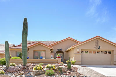 Pima County, Pinal County Single Family Home For Sale: 62253 E Amberwood Drive