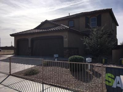 Marana Single Family Home For Sale: 11077 W Riverton Drive