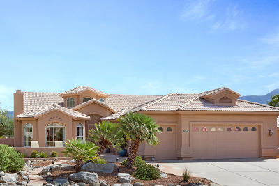 Pima County, Pinal County Single Family Home For Sale: 38057 S Skyline Drive