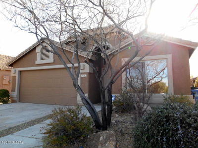 Vail Single Family Home Active Contingent: 13132 E Mesquite Flat Spring Drive