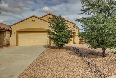 Marana Single Family Home For Sale: 9636 N Deimos Drive
