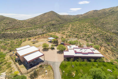 Pima County, Pinal County Single Family Home For Sale: 18460 S Camino Chuboso
