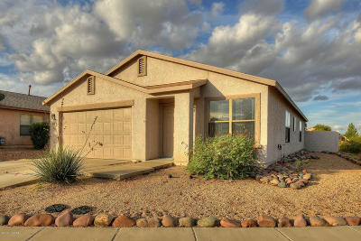 Tucson Single Family Home For Sale: 8780 E Green Branch Lane