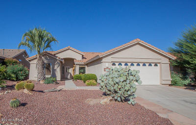 Pima County Single Family Home For Sale: 1103 N Rams Head Road