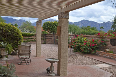 Oro Valley Single Family Home For Sale: 1056 E Coachwood Drive