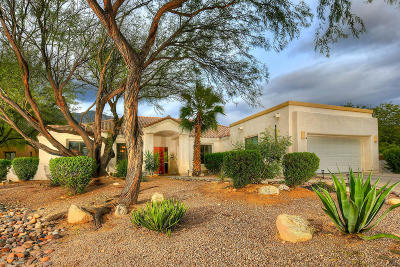 Tucson Single Family Home For Sale: 6470 N Silversmith Place