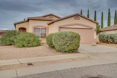 Pima County, Pinal County Single Family Home For Sale: 8721 E Green Branch Lane