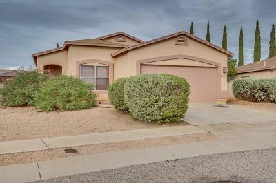 Tucson Single Family Home For Sale: 8721 E Green Branch Lane