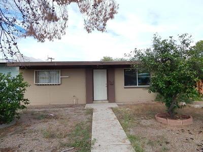 Tucson Single Family Home For Sale: 1309 E Iowa Drive