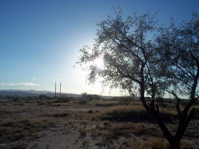 Tucson Residential Lots & Land For Sale: 11300 S Old Nogales Hy S
