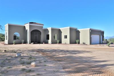 Tucson Single Family Home For Sale: 16285 W Prosperi Avenue