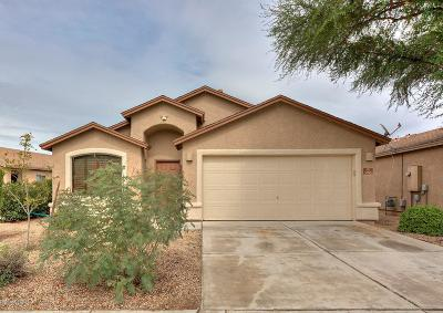 Pima County, Pinal County Single Family Home For Sale: 5915 E Franklin Tale Drive