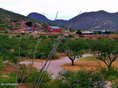 Cochise County Single Family Home For Sale: 1010 W Main Chance Road