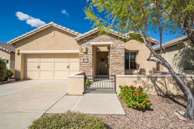 Pima County Single Family Home For Sale: 1136 W Versilia Drive