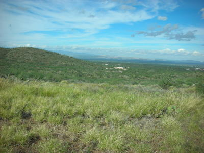 Residential Lots & Land For Sale: 10600 E Ocotillo Rim Trail