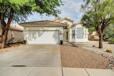 Tucson Single Family Home For Sale: 703 S Lucinda Drive