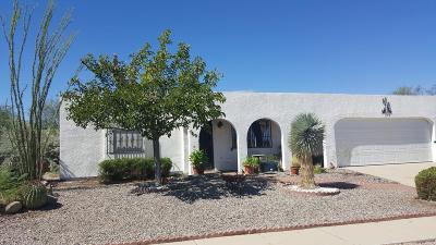 Pima County Single Family Home For Sale: 1948 S San Vincent Drive