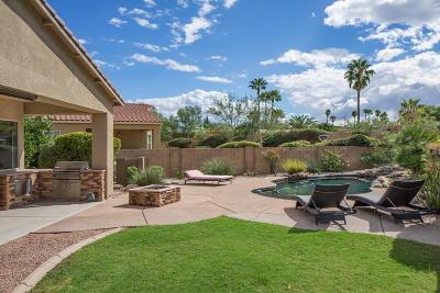 Single Family Home For Sale: 919 N Via Zahara Del Sol