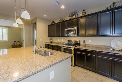 Sahuarita Single Family Home For Sale: 1060 E Wiley Squirrel Lane