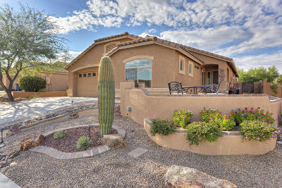 Pima County Single Family Home For Sale: 710 W Rio Teras