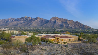 Pima County Single Family Home For Sale: 10685 N Rocky Slope Place