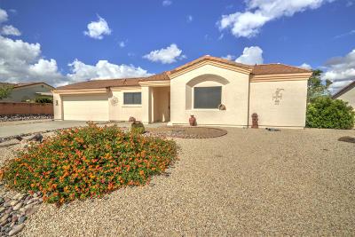 Pima County Single Family Home For Sale: 1488 W Prestwick Drive