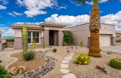 Pima County, Pinal County Single Family Home For Sale: 2002 W Vista Ridge Drive
