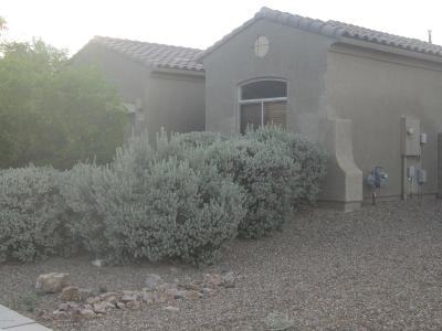 Tucson Single Family Home For Sale: 7826 W Sage Creek Court