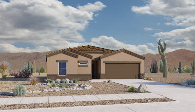 Pima County, Pinal County Single Family Home For Sale: 6223 S Water Fountain Drive
