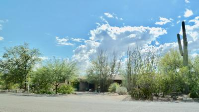 Pima County, Pinal County Single Family Home For Sale: 5655 N Genematas Drive