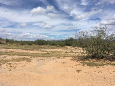 Residential Lots & Land For Sale: 4559 S Desert Sunrise Trail