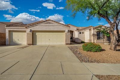 Pima County Single Family Home For Sale: 410 W Silvertip Road