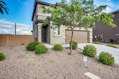 Pima County Single Family Home For Sale: 8079 S Dolphin Way