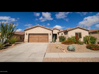 Marana Single Family Home For Sale: 11403 N Adobe Village Place