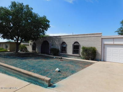 Pima County, Pinal County Single Family Home For Sale: 9841 E Sellarole Road