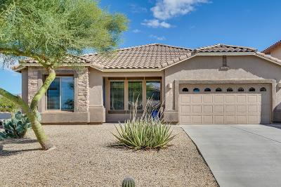 Marana Single Family Home Active Contingent: 3518 W Tailfeather Drive