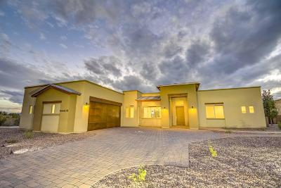 Pima County, Pinal County Single Family Home For Sale: 14401 N Desert Bloom Drive