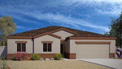 Pima County, Pinal County Single Family Home For Sale: 6215 S Water Fountain Drive