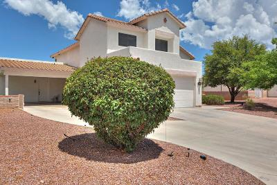 Rio Rico Single Family Home For Sale: 1134 Desert Flower Court