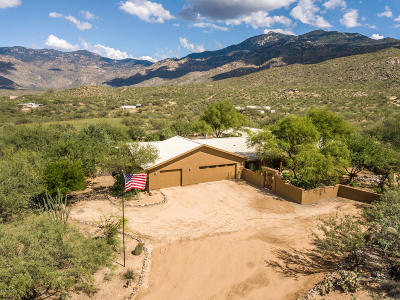 Pima County Single Family Home For Sale: 18020 E Wolf Track Trail